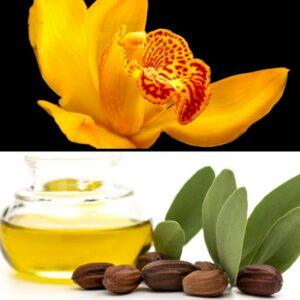 Organic-Shop-Jojoba-Orchidea